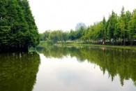 醴陵洪水灾害